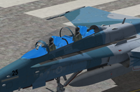 Click image for larger version.  Name:FSXBA FA-18C and FA-18D.png Views:0 Size:267.0 KB ID:53878