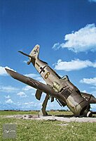 Click image for larger version.  Name:fw190a8.jpg Views:5 Size:57.0 KB ID:83142